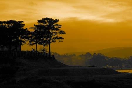 Vẻ đẹp cao nguyên Lâm Đồng